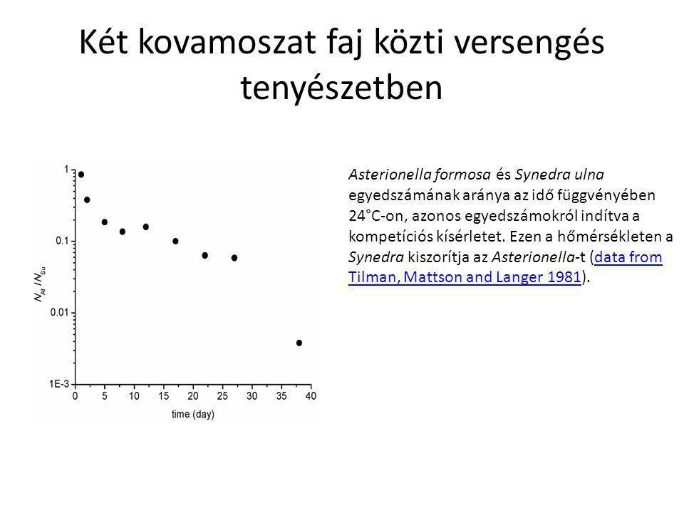 Két kovamoszat faj közti versengés tenyészetben Asterionella formosa és Synedra ulna egyedszámának aránya az idő függvényében 24°C-on, azonos egyedszámokról indítva a kompetíciós kísérletet.