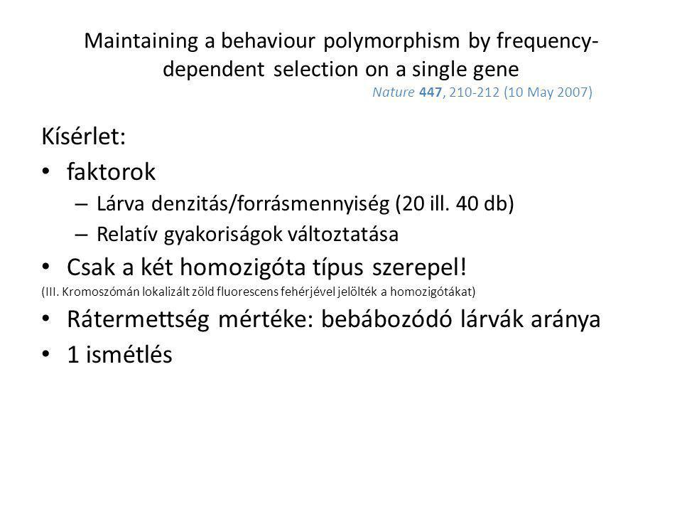 Maintaining a behaviour polymorphism by frequency- dependent selection on a single gene Nature 447, 210-212 (10 May 2007) Kísérlet: faktorok – Lárva d