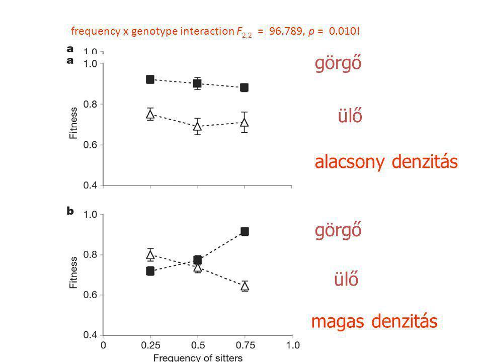 alacsony denzitás görgő ülő görgő ülő magas denzitás frequency x genotype interaction F 2,2 = 96.789, p = 0.010!