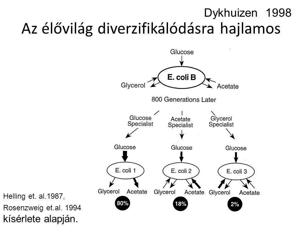 Az élővilág diverzifikálódásra hajlamos Dykhuizen 1998 Helling et. al.1987, Rosenzweig et.al. 1994 kísérlete alapján.