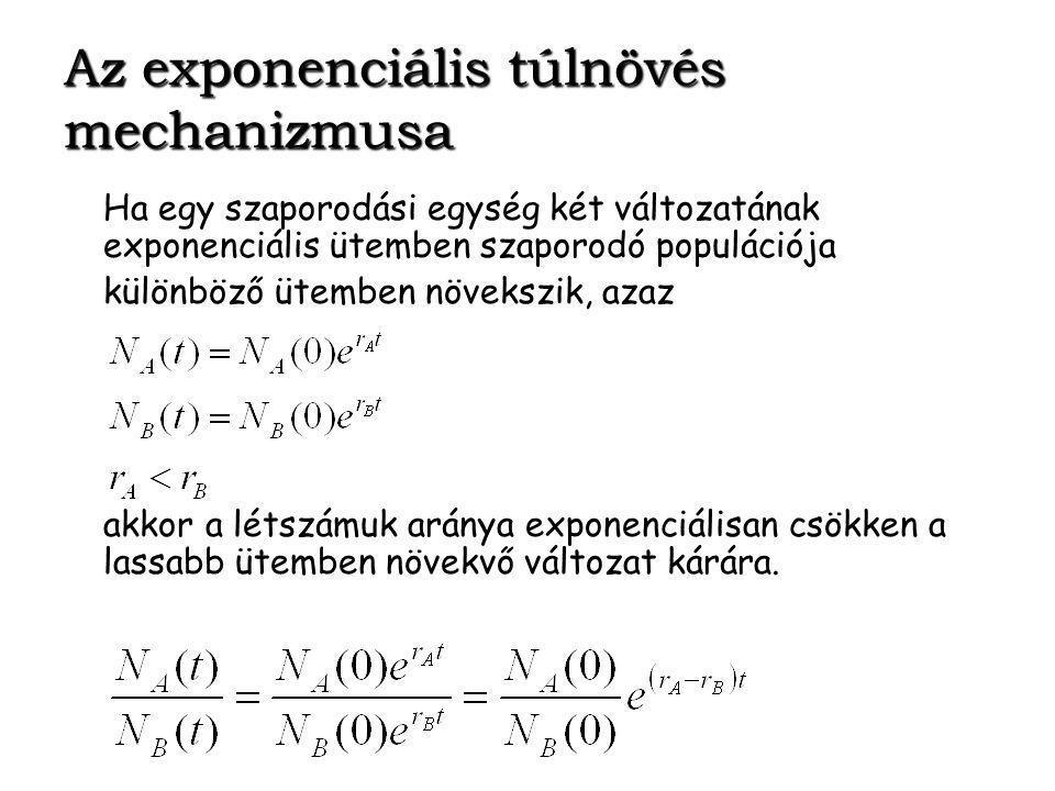 Az exponenciális túlnövés mechanizmusa Ha egy szaporodási egység két változatának exponenciális ütemben szaporodó populációja különböző ütemben növekszik, azaz akkor a létszámuk aránya exponenciálisan csökken a lassabb ütemben növekvő változat kárára.