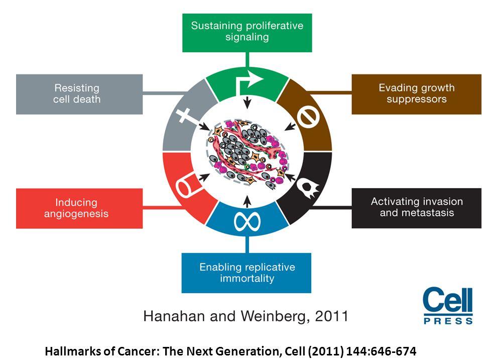 Six hallmarks already known – 6, már ismert rákos sejtekre jellemző sajátosság: 1.sustaining proliferative signaling – növekedési szignálok folyamatos fenntartása 2.