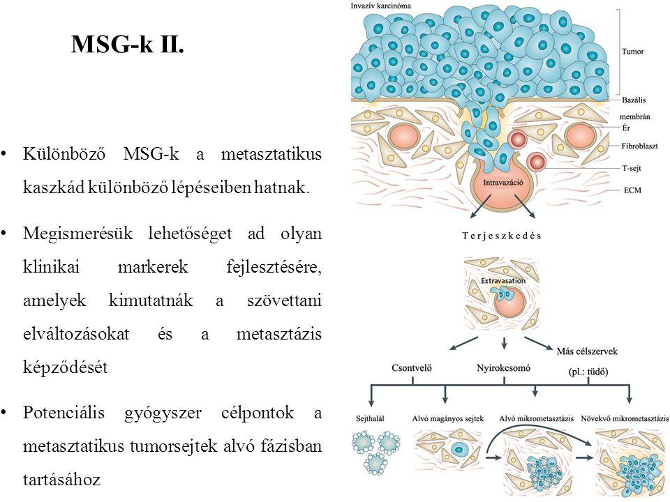 MSG-k II. Különböző MSG-k a metasztatikus kaszkád különböző lépéseiben hatnak. Megismerésük lehetőséget ad olyan klinikai markerek fejlesztésére, amel
