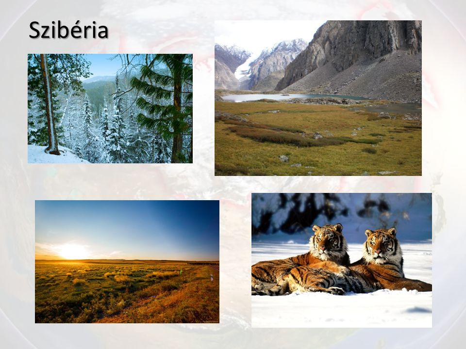 Szibéria