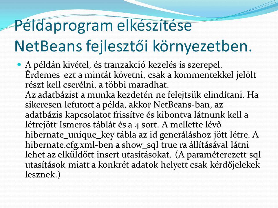 Példaprogram elkészítése NetBeans fejlesztői környezetben. A példán kivétel, és tranzakció kezelés is szerepel. Érdemes ezt a mintát követni, csak a k