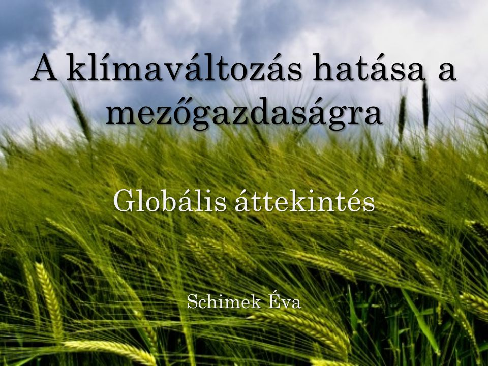 A klímaváltozás hatása a mezőgazdaságra Globális áttekintés Schimek Éva
