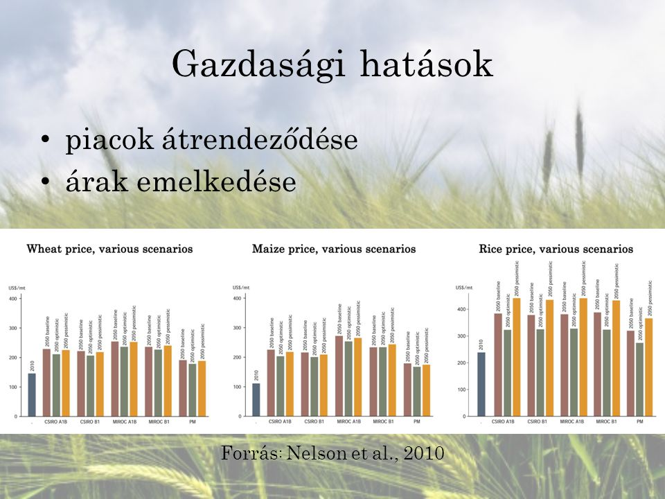 Gazdasági hatások piacok átrendeződése árak emelkedése Forrás : Nelson et al., 2010