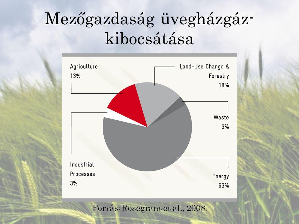 Mezőgazdaság üvegházgáz- kibocsátása Forrás : Rosegrant et al., 2008.