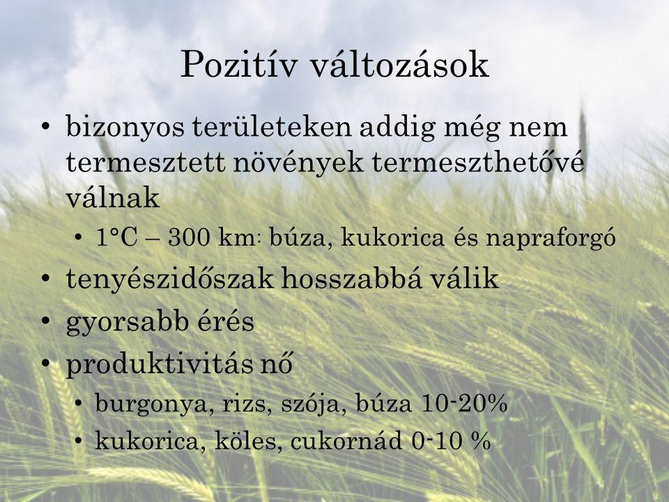 Pozitív változások bizonyos területeken addig még nem termesztett növények termeszthetővé válnak 1°C – 300 km : búza, kukorica és napraforgó tenyészid