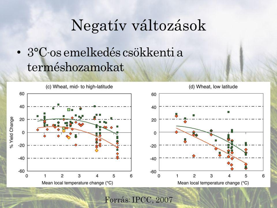 Negatív változások 3°C - os emelkedés csökkenti a terméshozamokat Forrás : IPCC, 2007