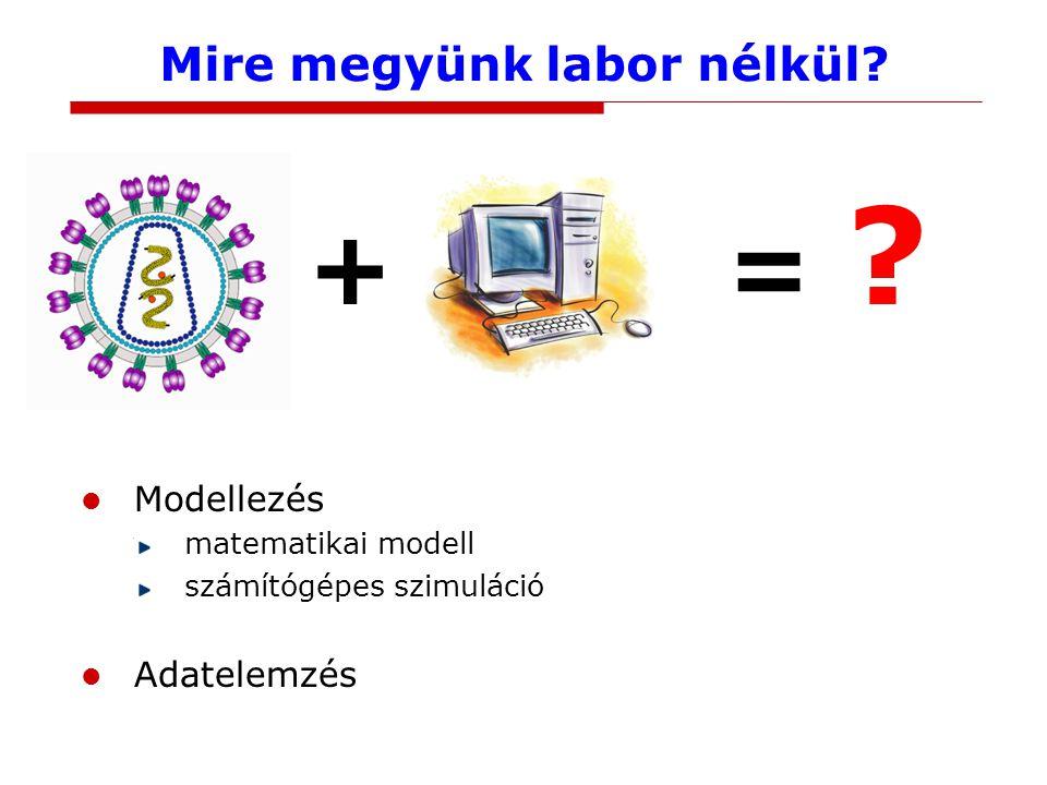 Molekuláktól az emberig Molekuláris folyamatok Szervezeten belüli folyamatok Populációs szintű folyamatok
