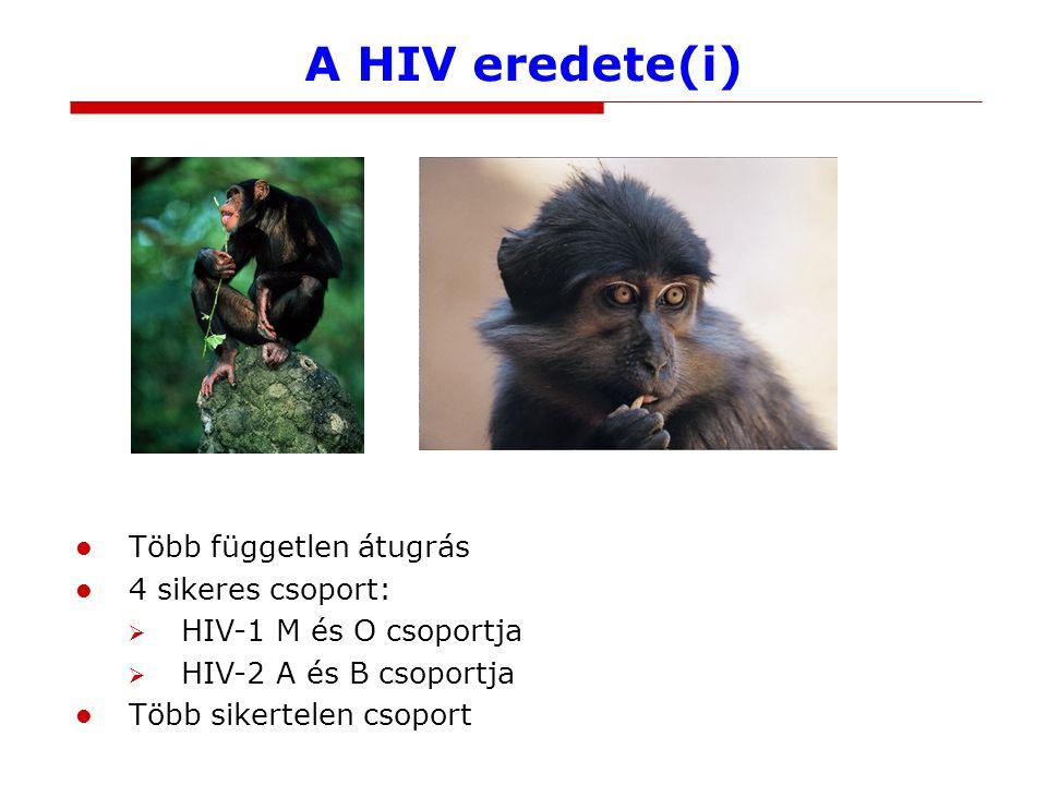 Járványos törzsek: szűk időablak Az összes sikeres HIV-csoport a 20.