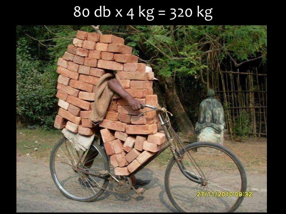 80 db x 4 kg = 320 kg
