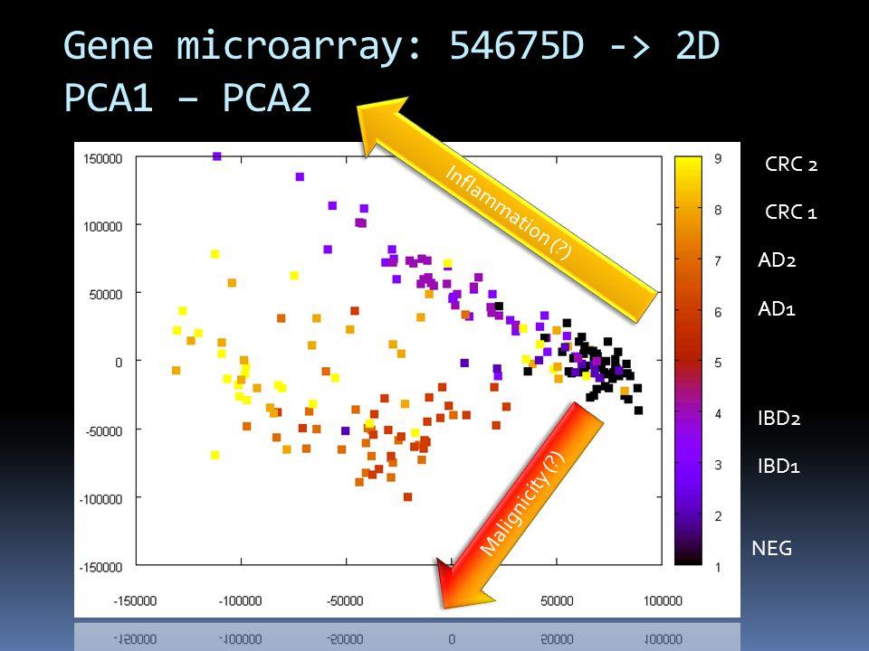 Gene microarray: 54675D -> 2D PCA1 – PCA2 Inflammation (?) Malignicity (?) CRC 2 AD2 AD1 IBD2 IBD1 NEG CRC 1