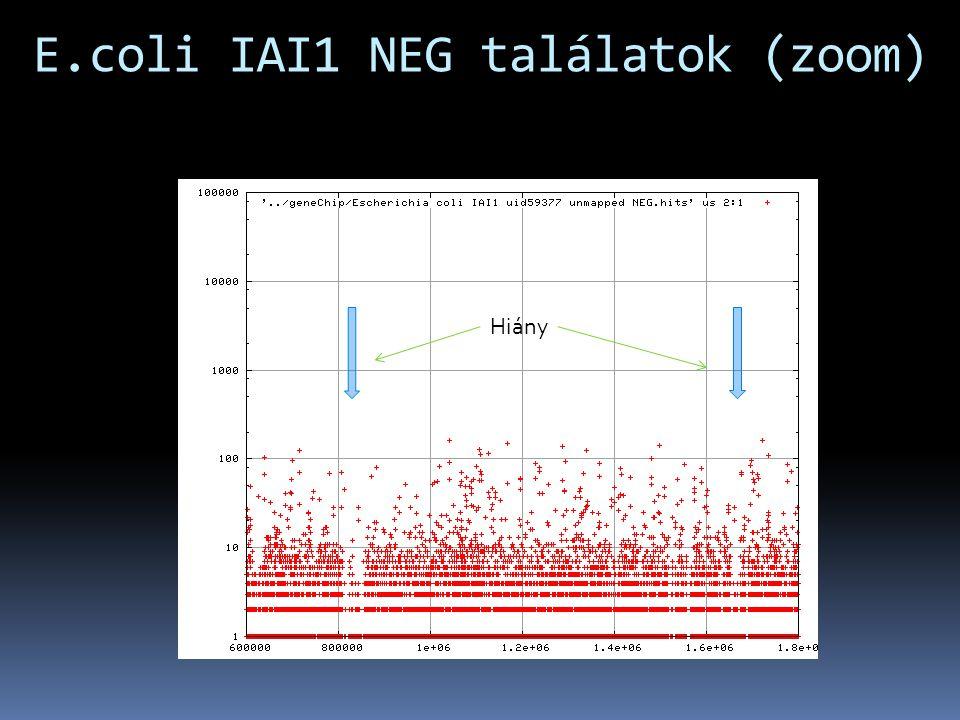 E.coli IAI1 NEG találatok (zoom) Hiány