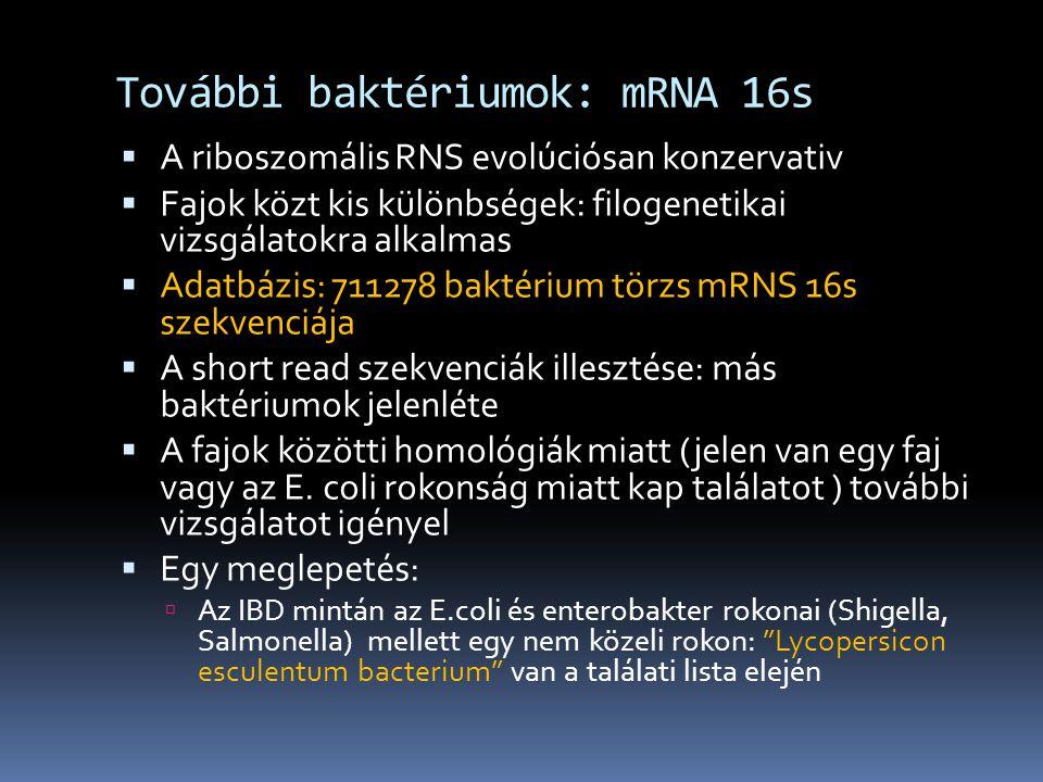 További baktériumok: mRNA 16s  A riboszomális RNS evolúciósan konzervativ  Fajok közt kis különbségek: filogenetikai vizsgálatokra alkalmas  Adatbázis: 711278 baktérium törzs mRNS 16s szekvenciája  A short read szekvenciák illesztése: más baktériumok jelenléte  A fajok közötti homológiák miatt (jelen van egy faj vagy az E.