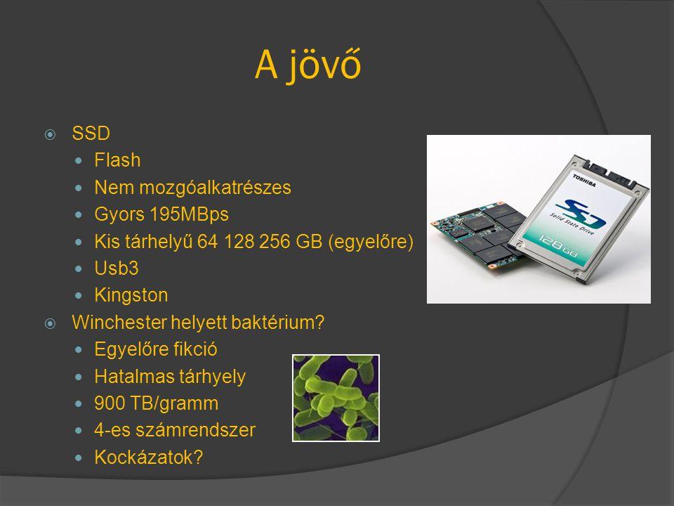 A jövő  SSD Flash Nem mozgóalkatrészes Gyors 195MBps Kis tárhelyű 64 128 256 GB (egyelőre) Usb3 Kingston  Winchester helyett baktérium? Egyelőre fik