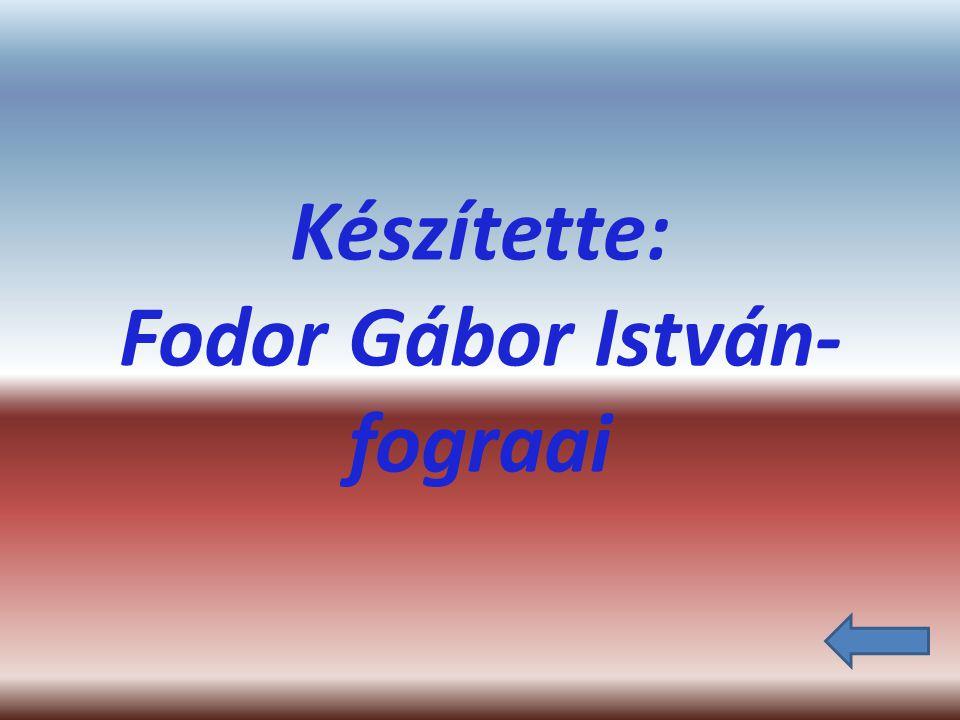 Készítette: Fodor Gábor István- fograai