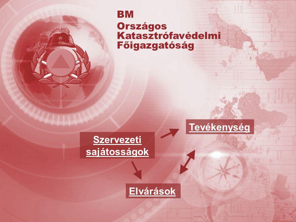 Szervezeti sajátosságok Tevékenység Elvárások BM Országos Katasztrófavédelmi Főigazgatóság