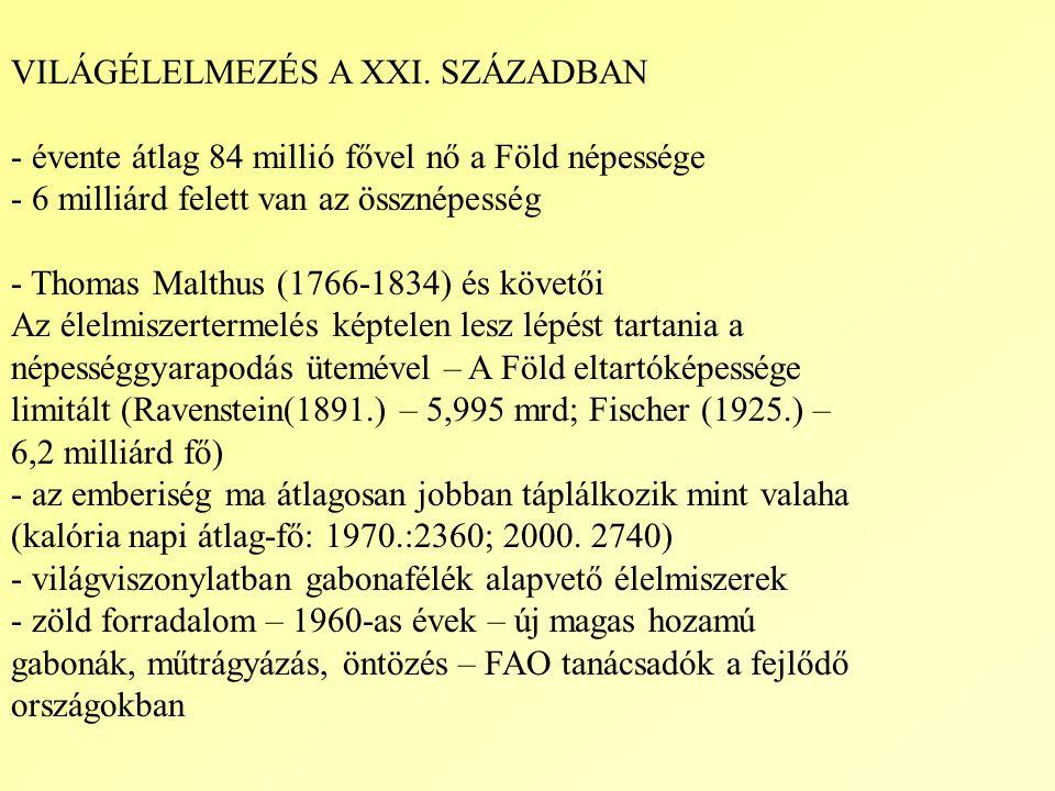 VILÁGÉLELMEZÉS A XXI.