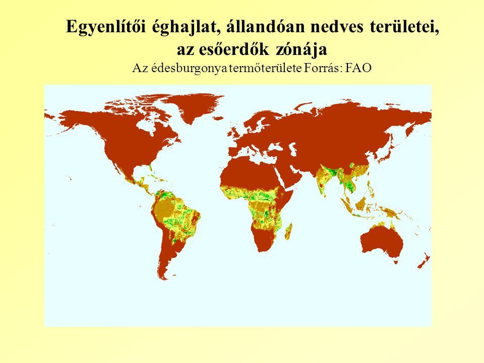 Egyenlítői éghajlat, állandóan nedves területei, az esőerdők zónája Az édesburgonya termőterülete Forrás: FAO