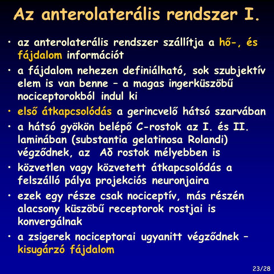 Az anterolaterális rendszer I. az anterolaterális rendszer szállítja a hő-, és fájdalom információt a fájdalom nehezen definiálható, sok szubjektív el