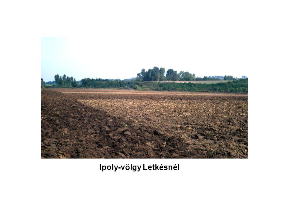 Magyarországi folyók teraszrendszere Cholnoky Jenő 1923 Bulla Béla 1941 Pécsi Márton 1959