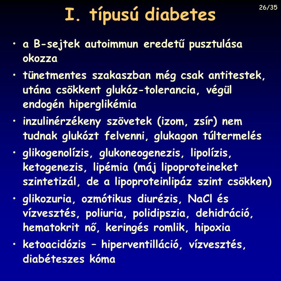 I. típusú diabetes a B-sejtek autoimmun eredetű pusztulása okozza tünetmentes szakaszban még csak antitestek, utána csökkent glukóz-tolerancia, végül