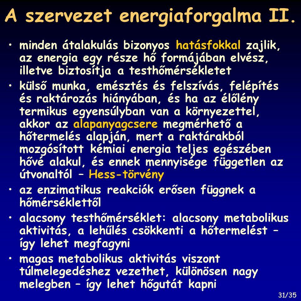 A szervezet energiaforgalma II. minden átalakulás bizonyos hatásfokkal zajlik, az energia egy része hő formájában elvész, illetve biztosítja a testhőm