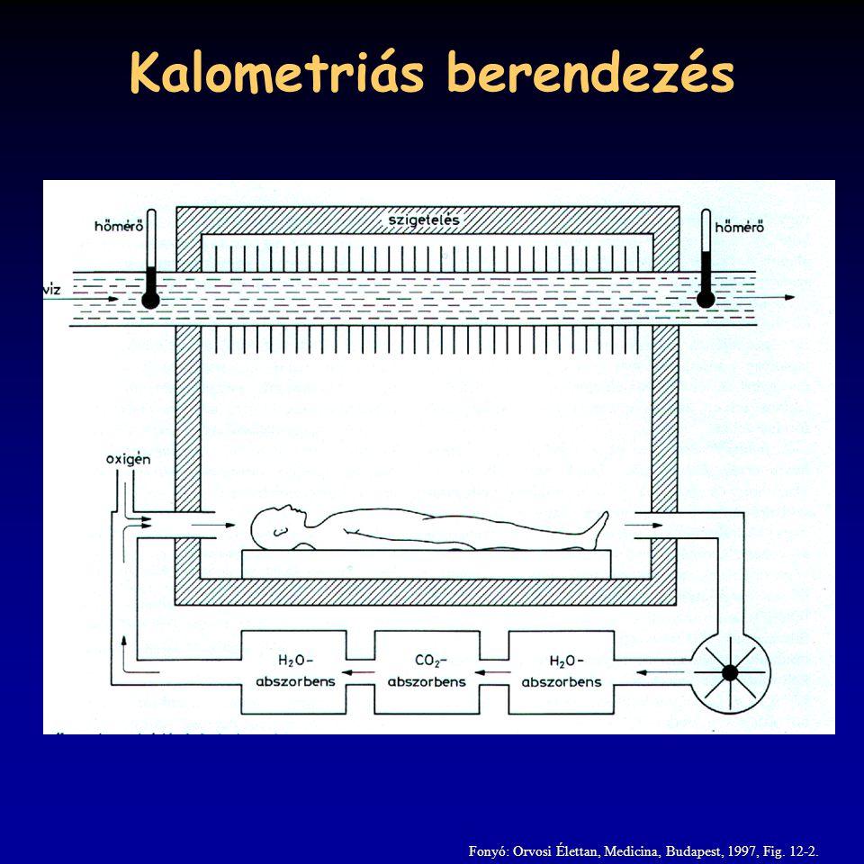 Kalometriás berendezés Fonyó: Orvosi Élettan, Medicina, Budapest, 1997, Fig. 12-2.