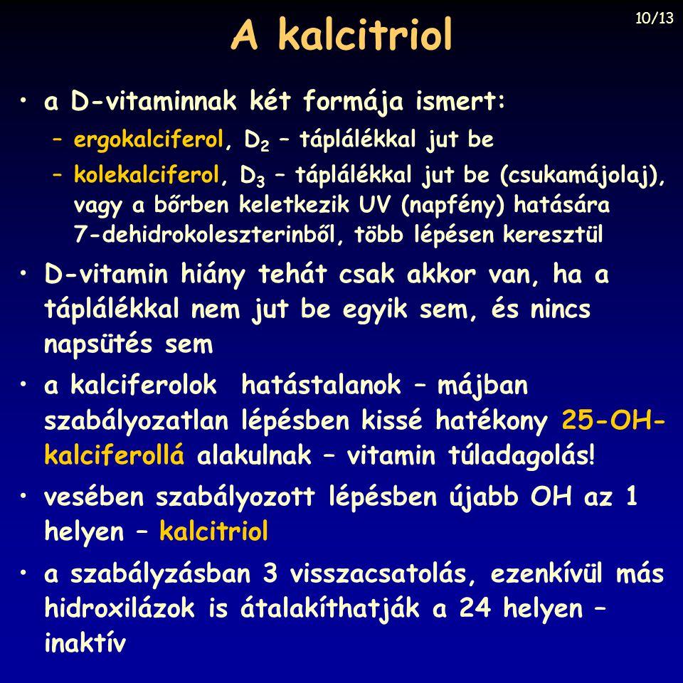 A kalcitriol a D-vitaminnak két formája ismert: –ergokalciferol, D 2 – táplálékkal jut be –kolekalciferol, D 3 – táplálékkal jut be (csukamájolaj), va