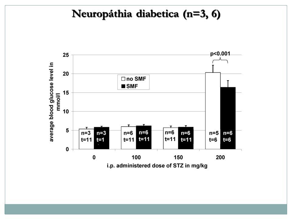 Neuropáthia diabetica (n=3, 6)