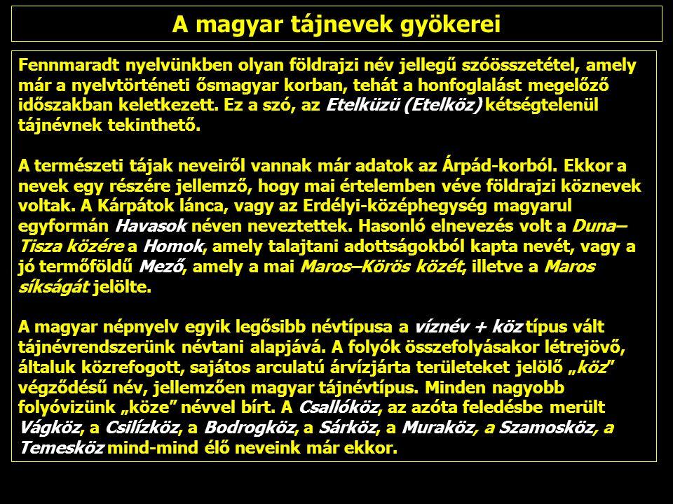 A térképi névhasználat alapján, 1992-től kettős tájszemlélet a magyar kartográfiában, amelynek alapjai: Pécsi–Marosi– Somogyi–Sárfalvi (FNT I.–MNA) tájszemlélet Pécsi–Marosi– Somogyi–Sárfalvi (FNT I.–MNA) tájszemlélet A határokon túli, kárpát-térségi névanyagban sok idegen hatás A határokon túli, kárpát-térségi névanyagban sok idegen hatás A történeti-földrajzi- néprajzi tájnevek ábrázolása hézagos.