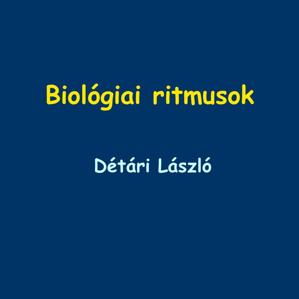 Biológiai ritmusok Détári László