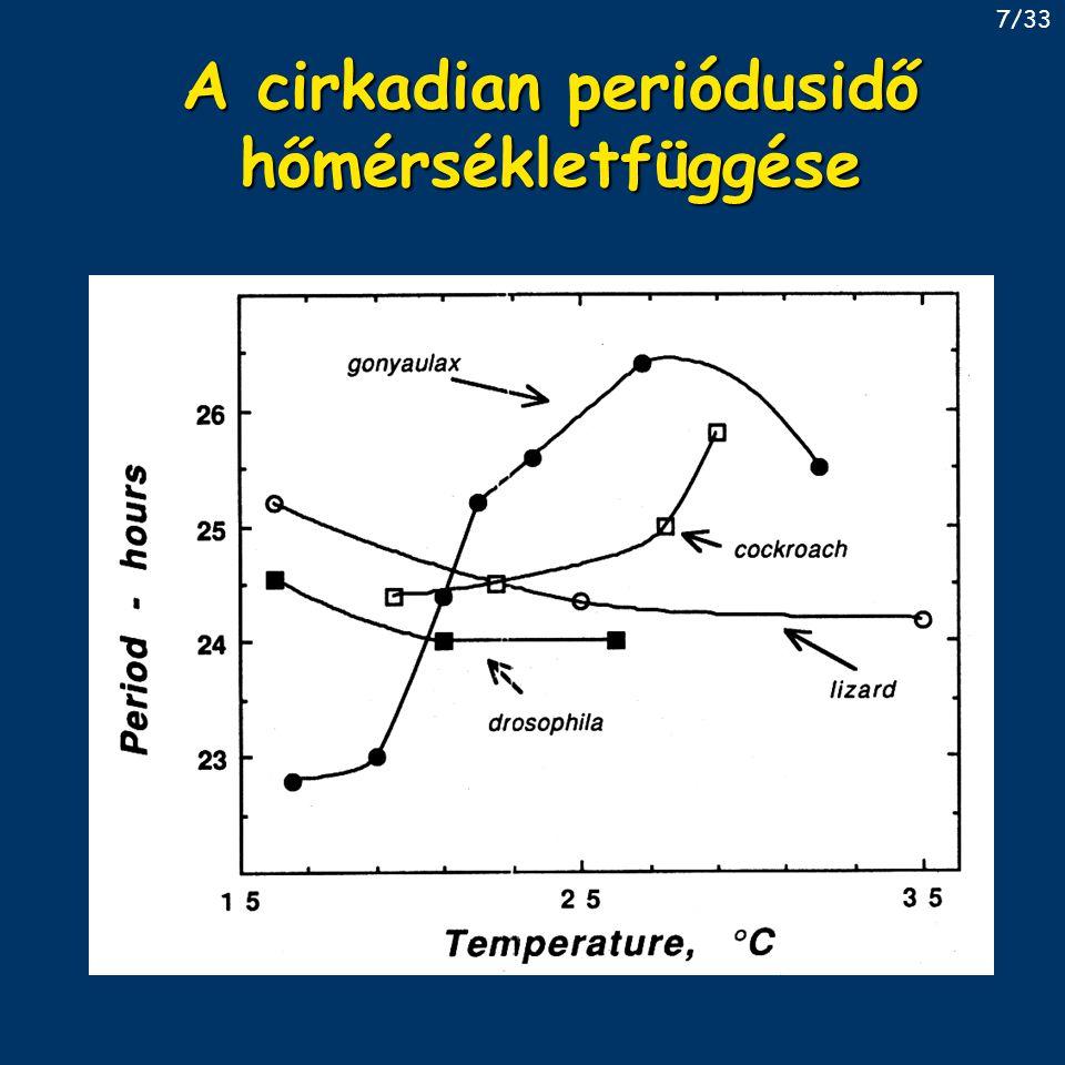 A cirkadian periódusidő hőmérsékletfüggése 7/33