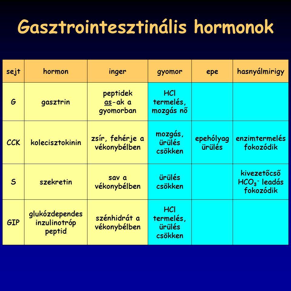 Gasztrointesztinális hormonok sejthormoningergyomorepehasnyálmirigy Ggasztrin peptidek as-ak a gyomorban HCl termelés, mozgás nő CCKkolecisztokinin zs