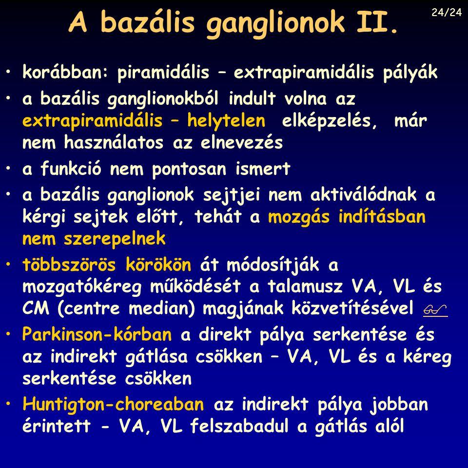 A bazális ganglionok II. korábban: piramidális – extrapiramidális pályák a bazális ganglionokból indult volna az extrapiramidális – helytelen elképzel