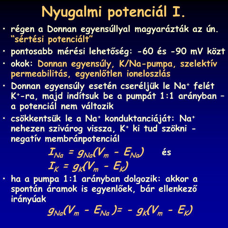 """Nyugalmi potenciál I. régen a Donnan egyensúllyal magyarázták az ún. """"sértési potenciált"""" pontosabb mérési lehetőség: -60 és -90 mV közt okok: Donnan"""