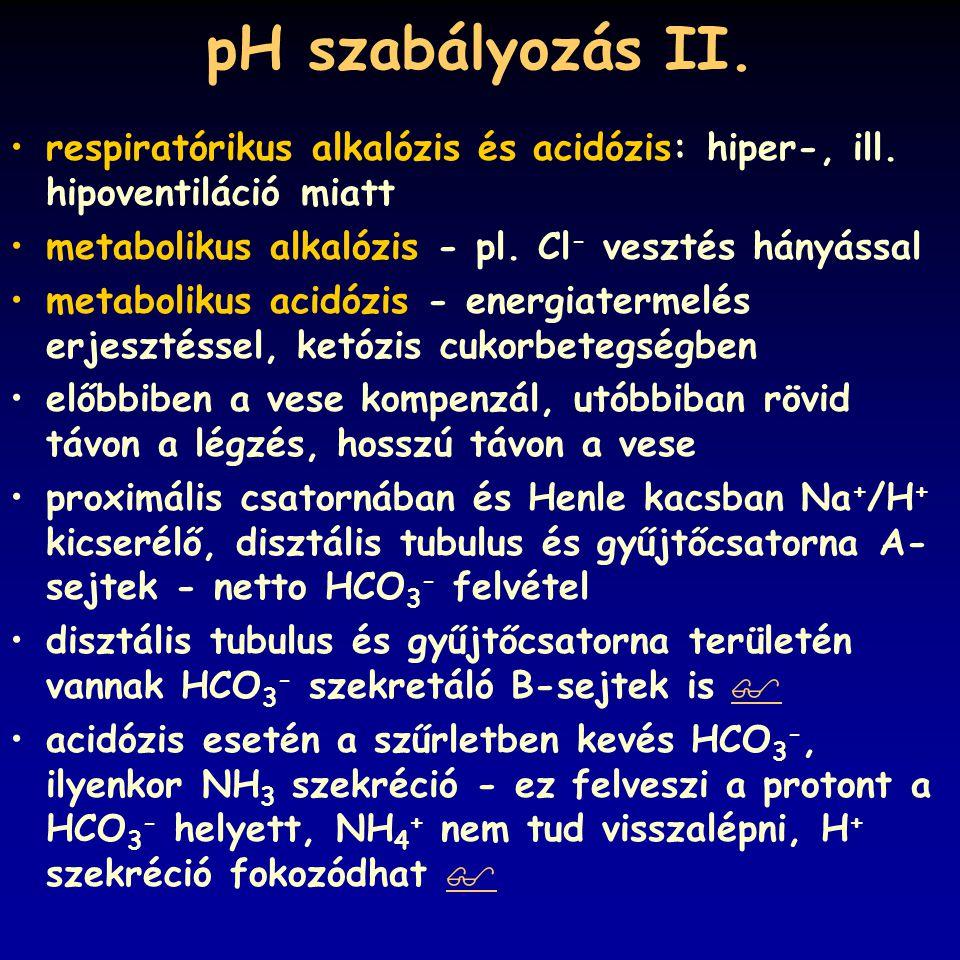 pH szabályozás II. respiratórikus alkalózis és acidózis: hiper-, ill. hipoventiláció miatt metabolikus alkalózis - pl. Cl - vesztés hányással metaboli