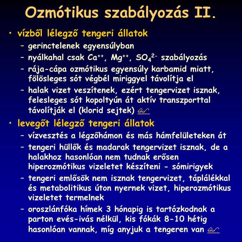 pH szabályozás I.