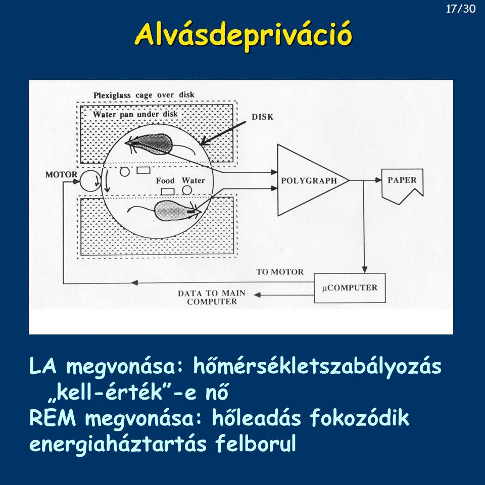 """AlvásdeprivációAlvásdepriváció LA megvonása: hőmérsékletszabályozás """"kell-érték""""-e nő REM megvonása: hőleadás fokozódik energiaháztartás felborul 17/3"""