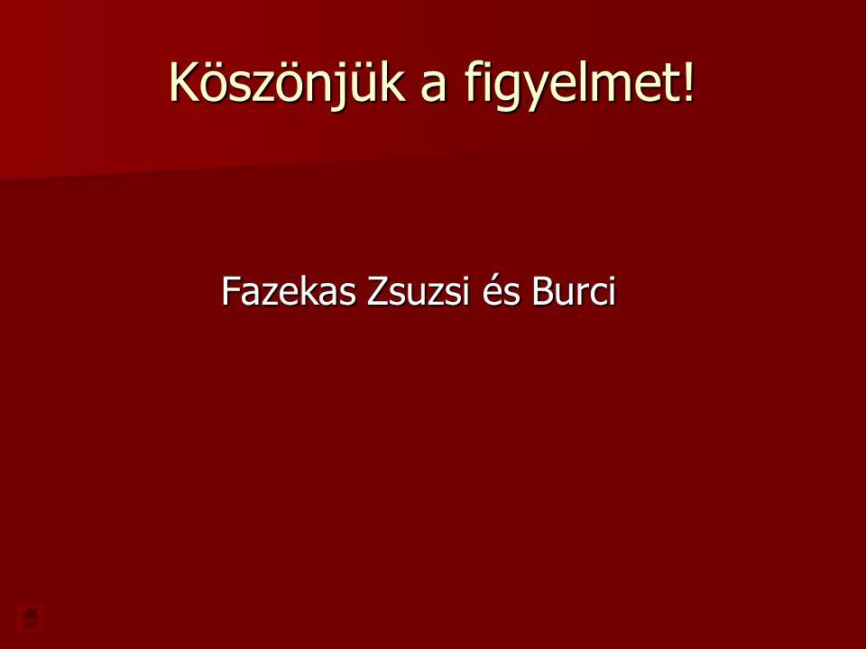 Köszönjük a figyelmet! Fazekas Zsuzsi és Burci Fazekas Zsuzsi és Burci