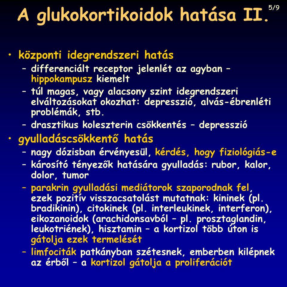 A glukokortikoidok hatása II. központi idegrendszeri hatás –differenciált receptor jelenlét az agyban – hippokampusz kiemelt –túl magas, vagy alacsony