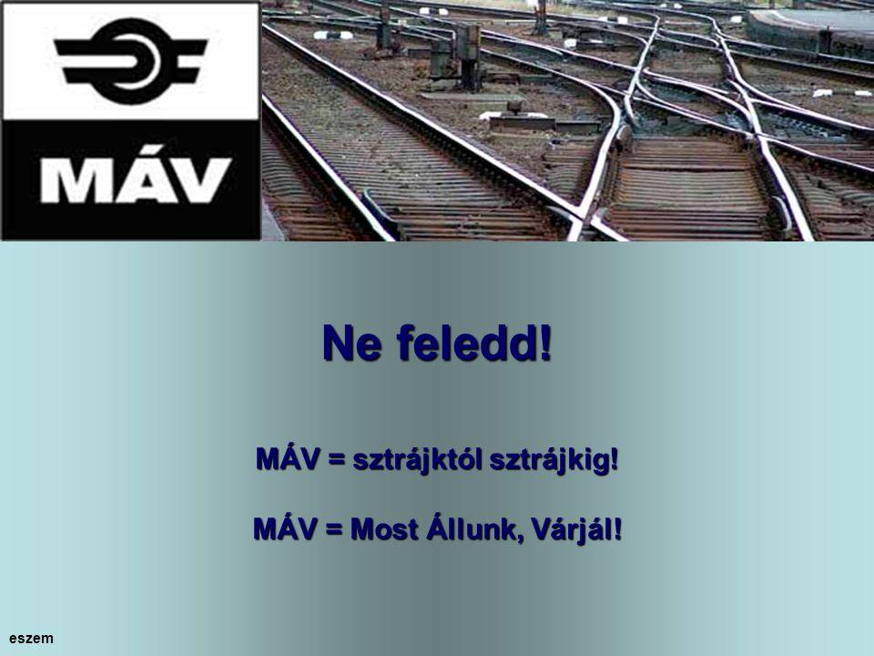 Az utasokról Gaskó István és a MÁV vezetősége megfelelően gondoskodik! eszem