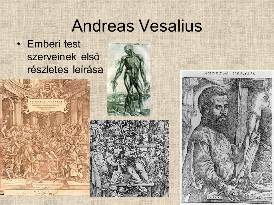 Természetkutatók Agricola … Tycho Brache Kopernikusz Kepler