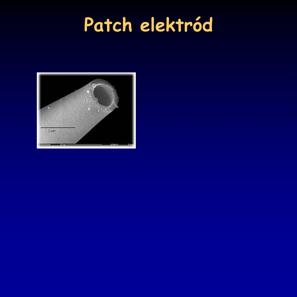Patch elektród