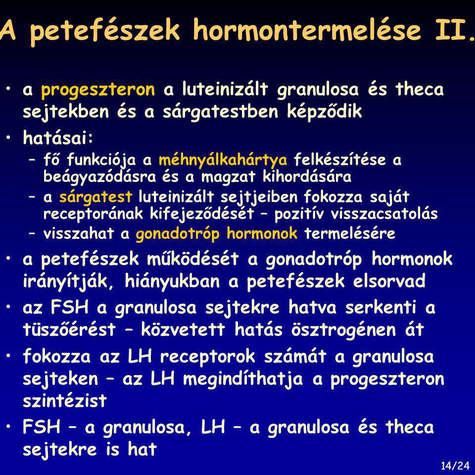 A petefészek hormontermelése II. a progeszteron a luteinizált granulosa és theca sejtekben és a sárgatestben képződik hatásai: –fő funkciója a méhnyál