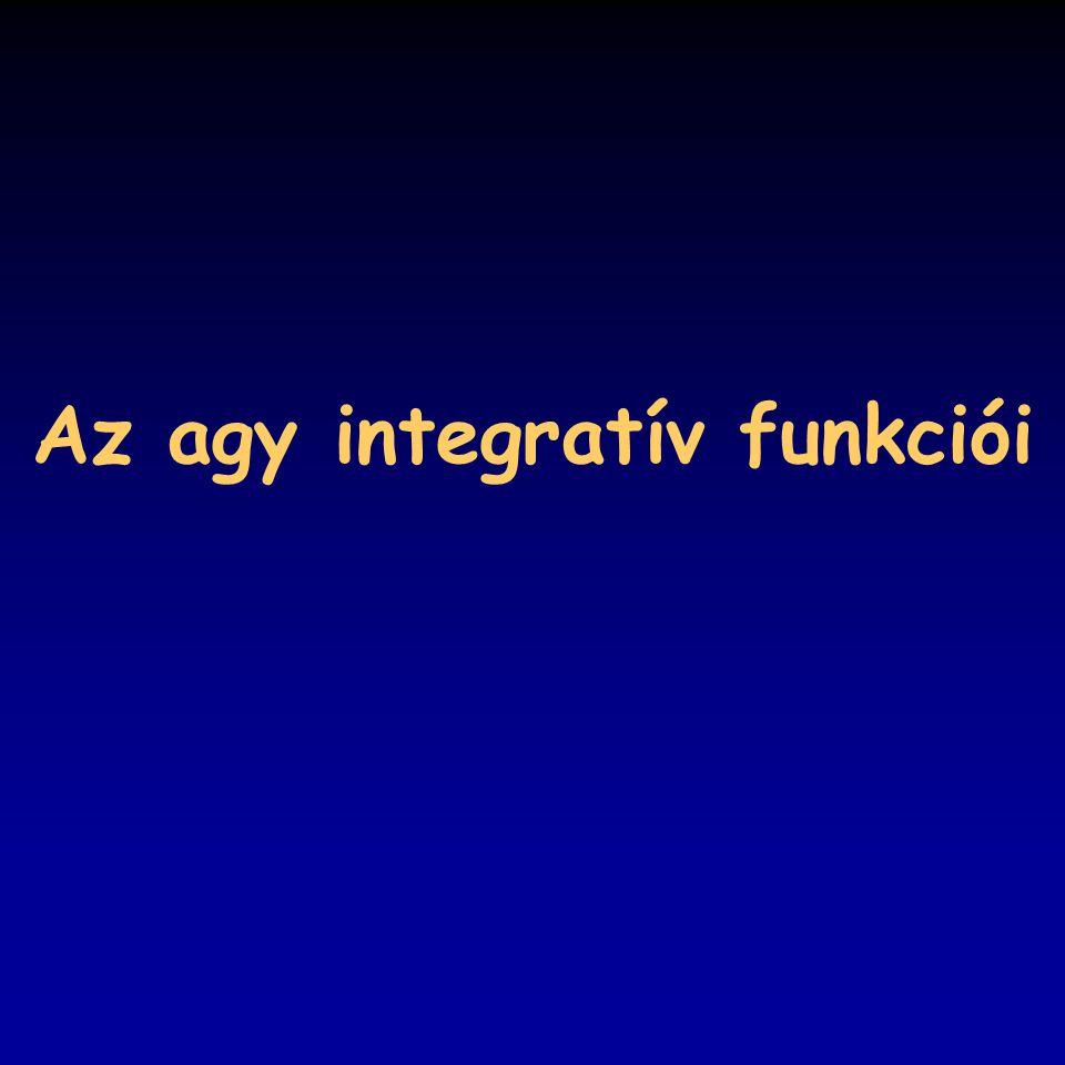 Az agy integratív funkciói