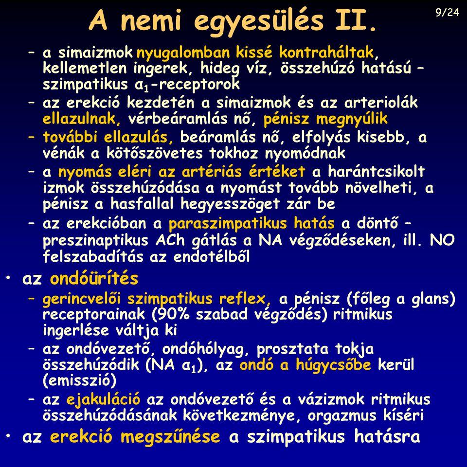 A pénisz szerkezete Fonyó: Orvosi Élettan, Medicina, Budapest, 1997, Fig. 33-8.
