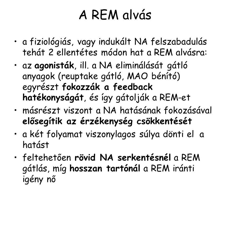 A REM alvás a fiziológiás, vagy indukált NA felszabadulás tehát 2 ellentétes módon hat a REM alvásra: az agonisták, ill.